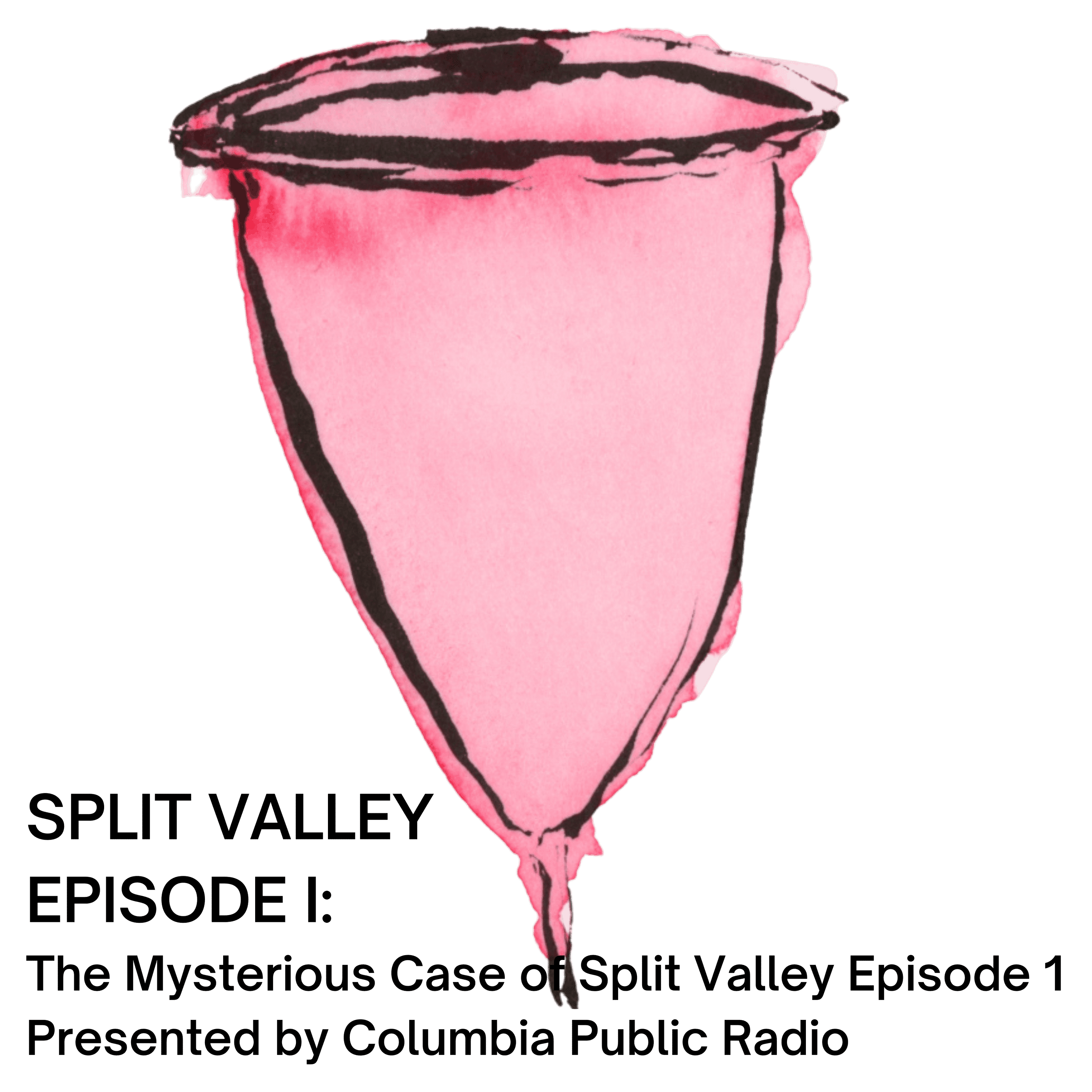 Episode I: The Mysterious Case of Split Valley Episode 1 Presented by Columbia Public Radio