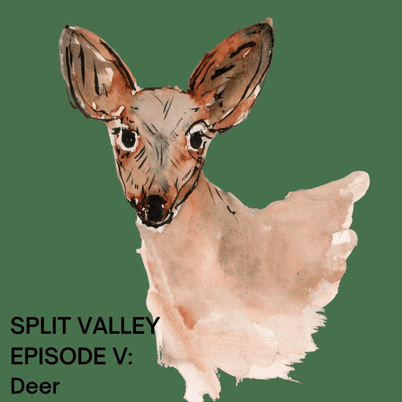 Episode V: Deer