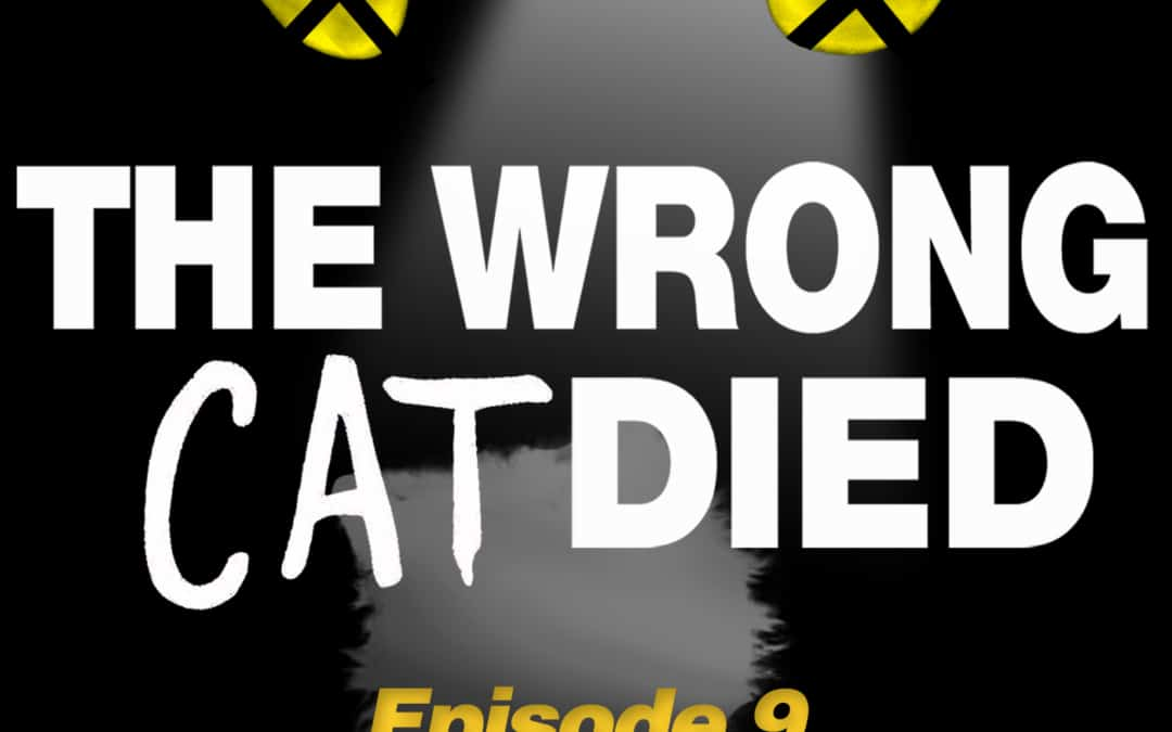 Ep9 – Mr. Mistoffelees, the magical one